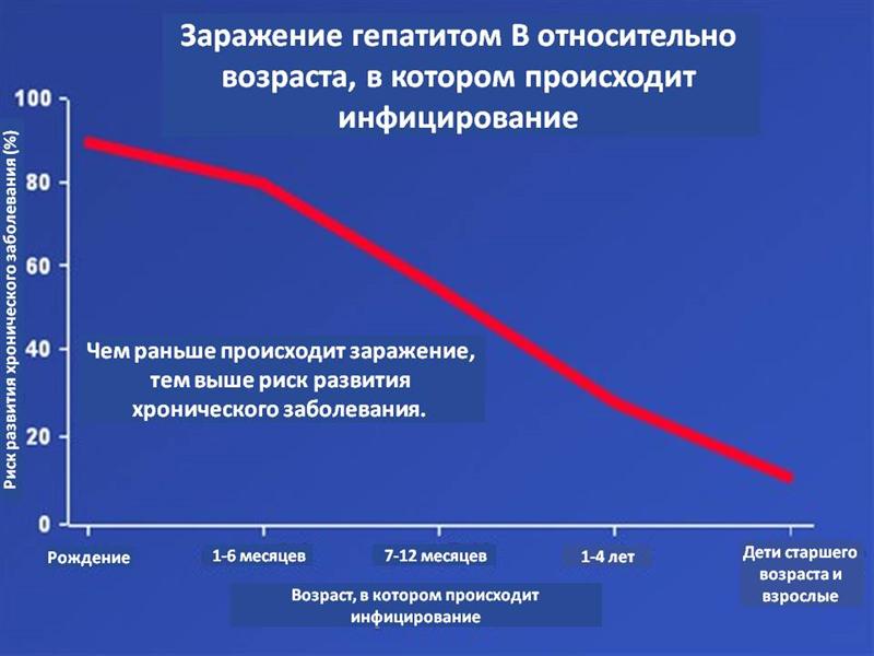 גרף הידבקות הפטיטיס B - רוסית